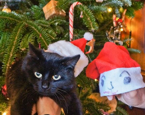 Ho Ho Ho – Merry XmasHolidayFestivals