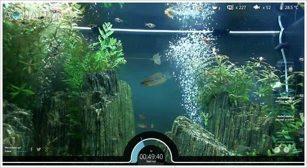 Aquardio – Bored? Then feed some real fish with your browser and mouse button