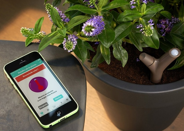 Parrot Flower Power – digital green fingers will suddenly make you an expert gardener