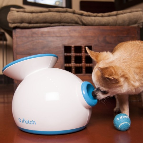 iFetch Interactive Ball Launcher – because your dog needs a best friend too