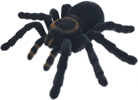 Radio Control Tarantula – aka how to avoid visitors on Halloween