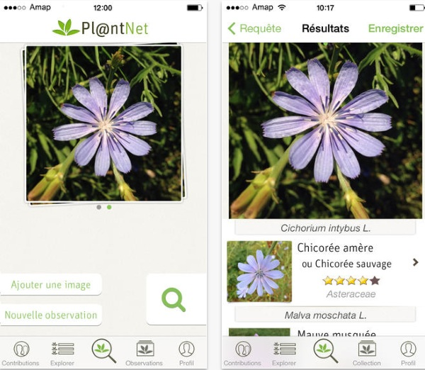 PlantNet – help scientist identify plants [FREEWARE]