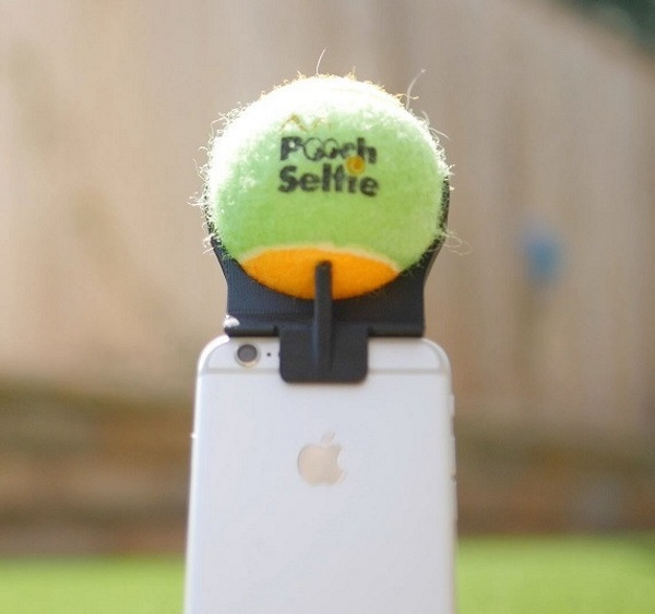 Pooch Selfie Smartphone Attachment – now you can get your dog to sit and say cheese