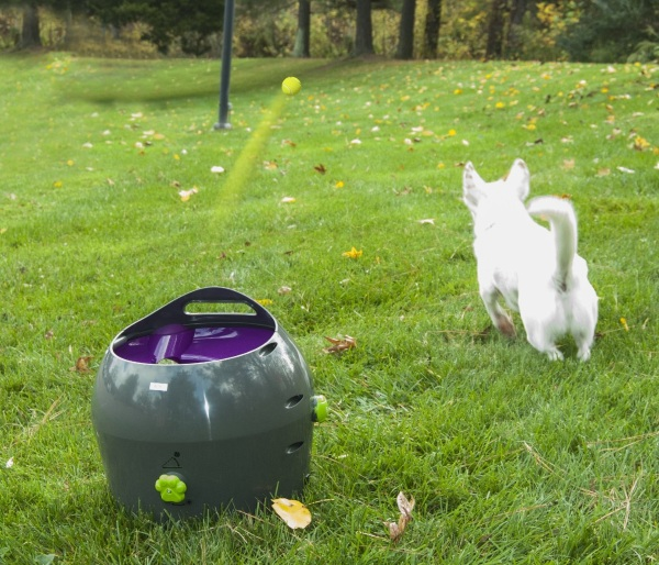 PetSafe Automatic Ball Launcher – play fetch without throwing a ball