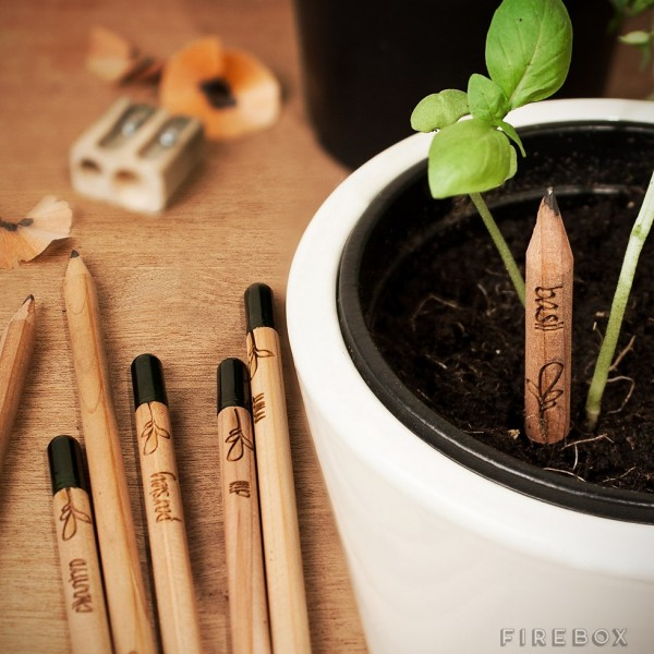 Sprout Pencils – you can still create something with these pencils long after they don't write anymore