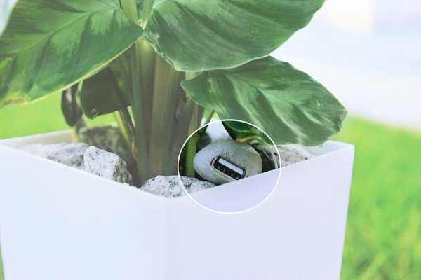 Bioo Lite – turn plant power into battery life with this pot