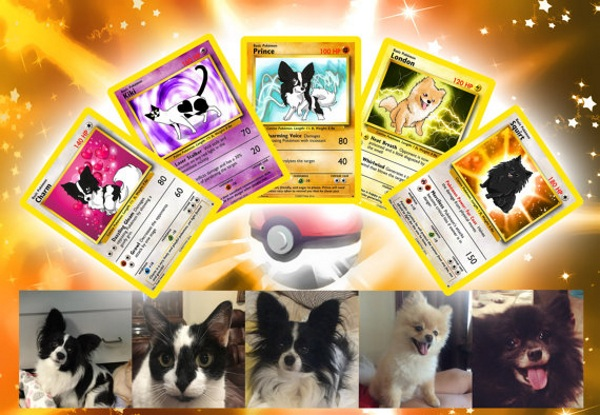 Personalized Pokemon Cards – turn your furry friend into a pokemon