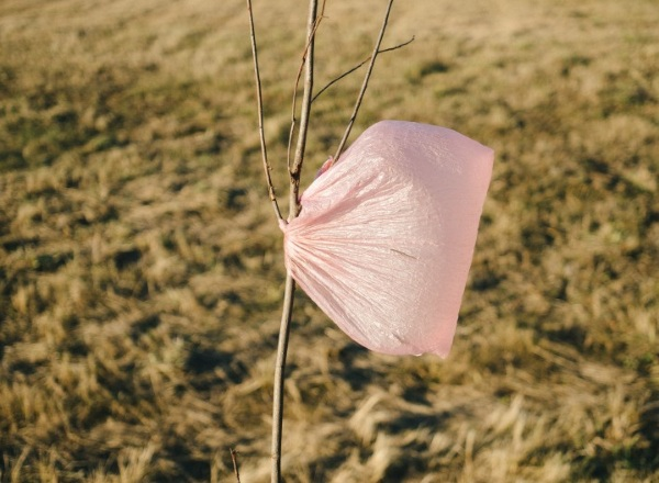 Plastic Film Recycling – get rid of all those plastic bags without harming the earth