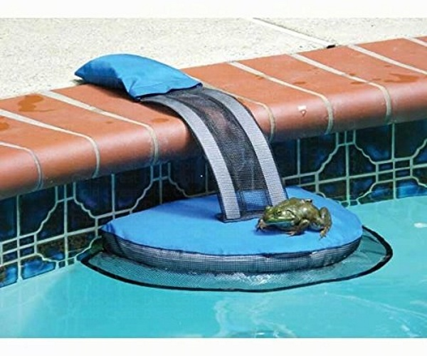 FrogLog – keep critters from getting trapped in your pool