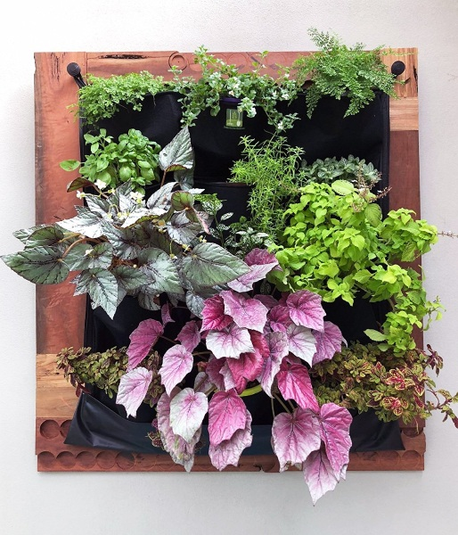 Living Green Wall – plant your garden right in your apartment