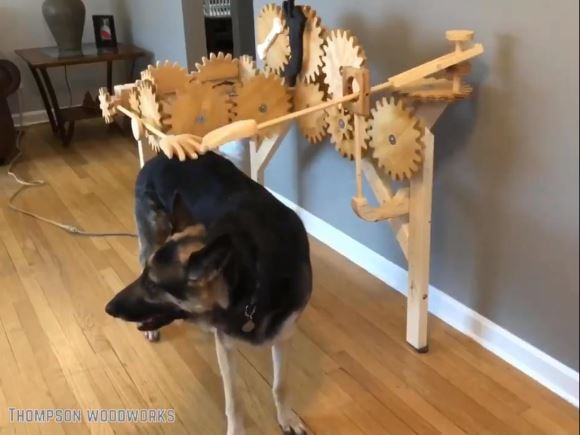 DIY Automatic Dog Petting Machine – why waste time when a gadget can make your dog happy for you?