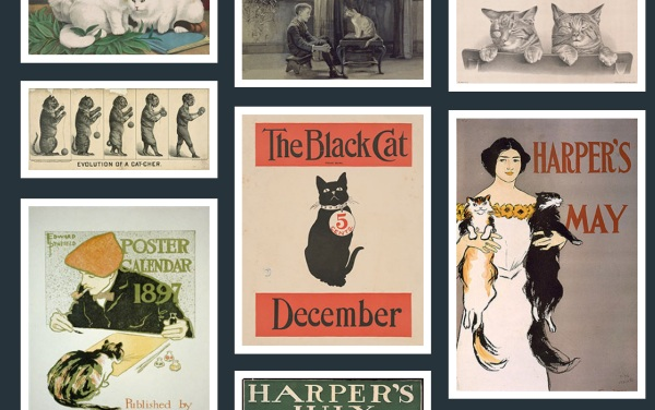 Free To Use Cat Image Library – check out all these vintage cats