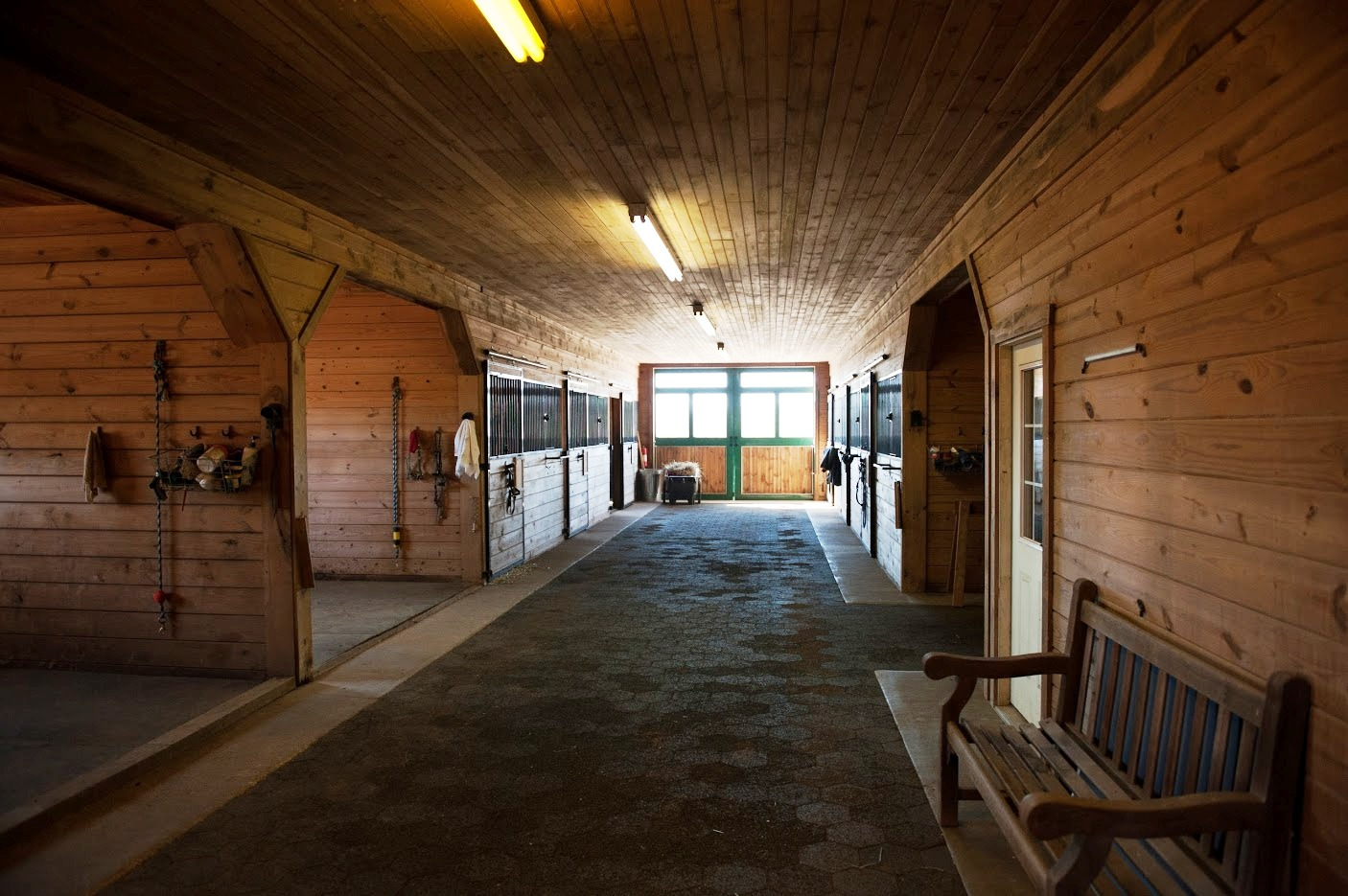 Red Gate Farm  Riding lessons shows horse camps and