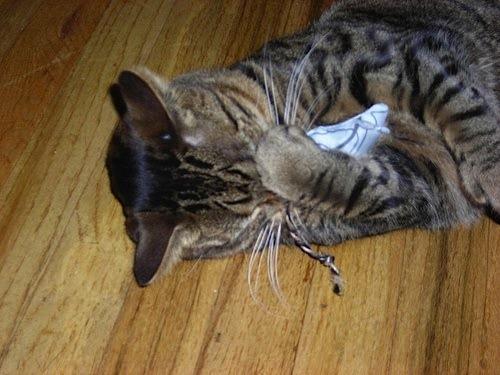 Tutorial: Fabric Scrap Catnip Mousies | Red-Handled Scissors