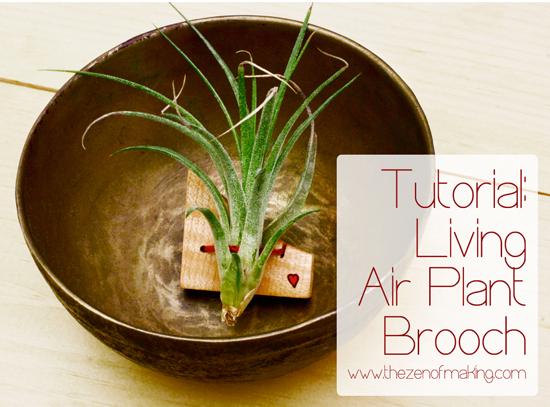 Tutorial: Living Air Plant Brooch for Craftzine.com | Red-Handled Scissors