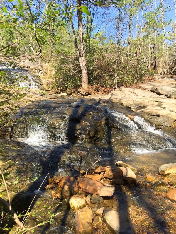 Take a Walk at Moss Rock Preserve