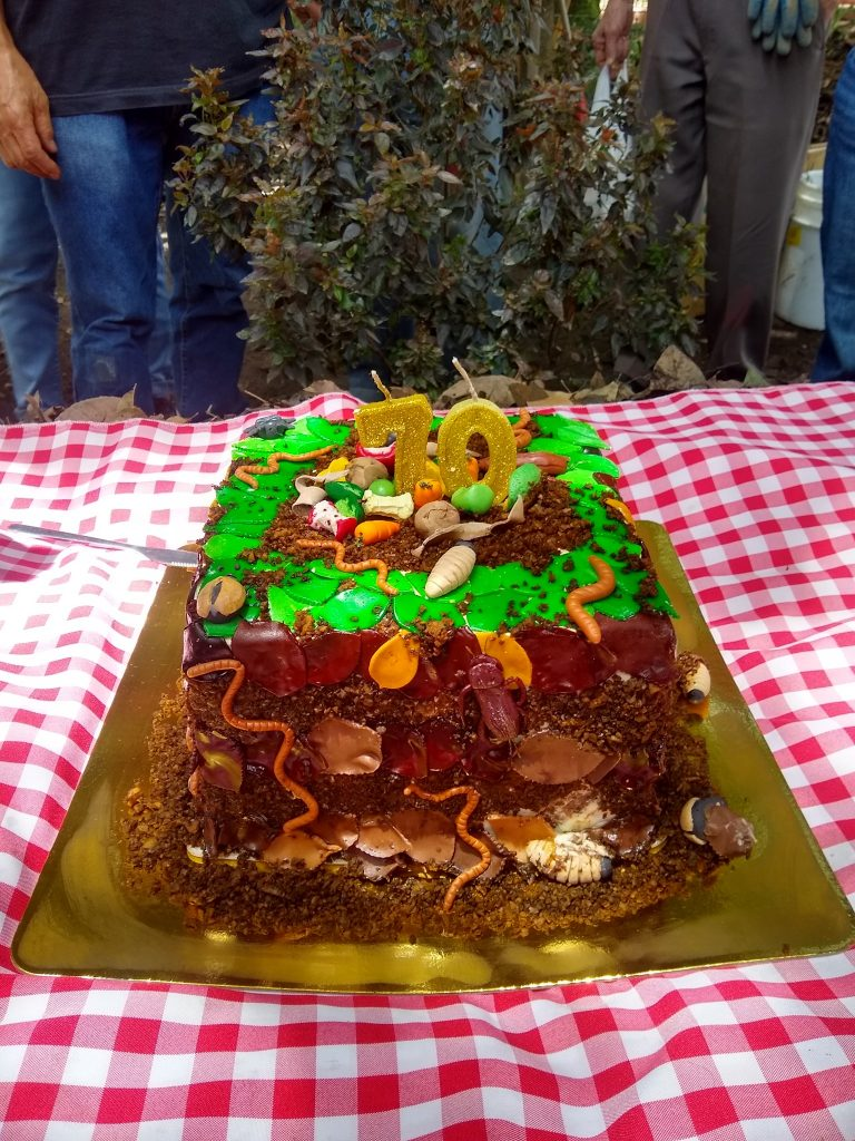 La torta paca