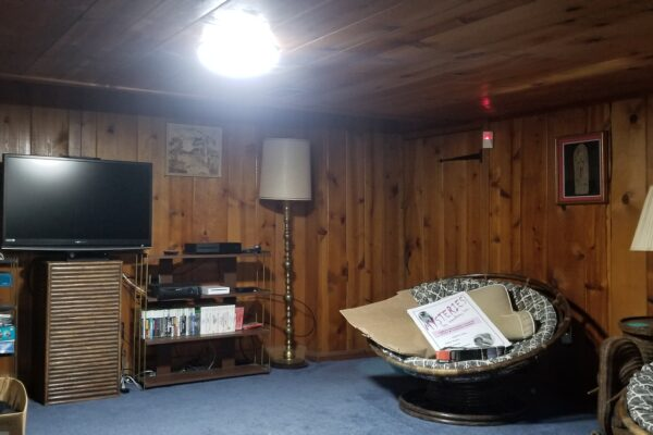 Wood paneled basement
