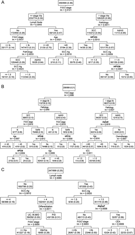 Clinical Effect of Human Papillomavirus Genotypes in
