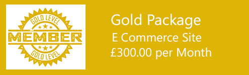 seo cardiff - Gold seo package