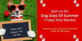Dog Days of Summer Yappy Hour