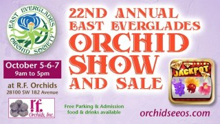 East Everglades Orchid Society 22nd Annual Show and Sale