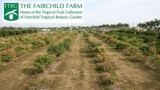 Classes at Fairchild Farm