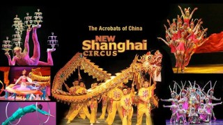 New Shanghai Circus