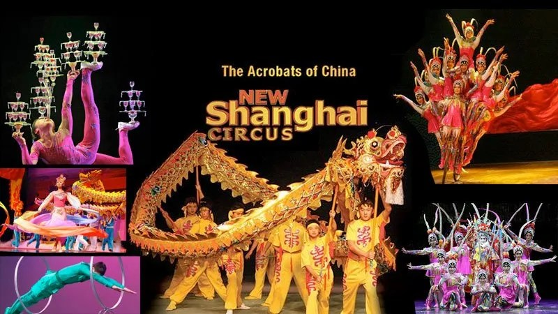 Image result for new shanghai circus