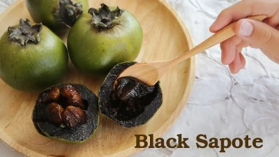 Fruit and Spice Park - Black Sapote