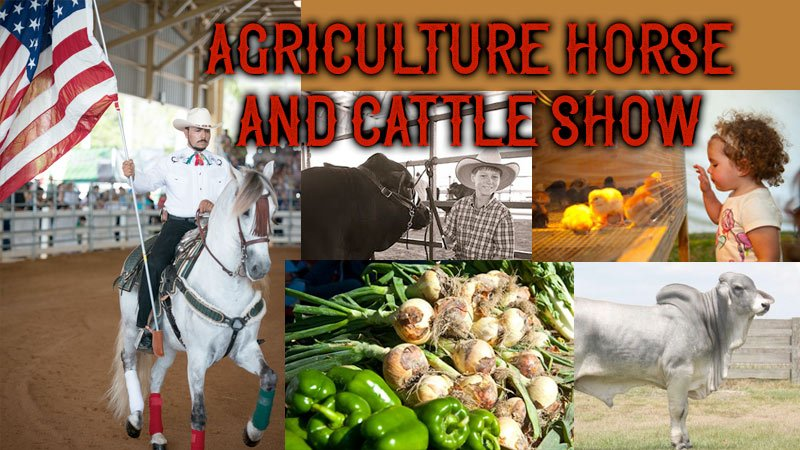 Miami International Agriculture, Horse and Cattle Show