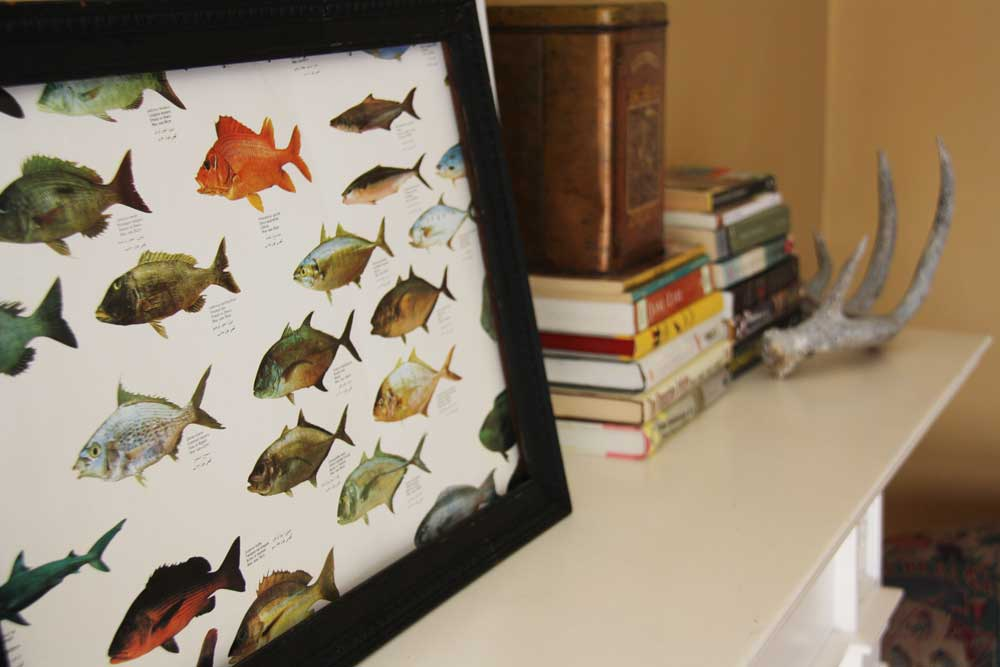 Fish poster in vintage picture frame | redleafstyle.com