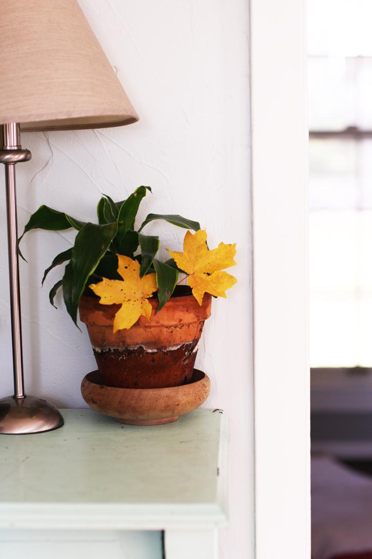 plant_leaves_lamp