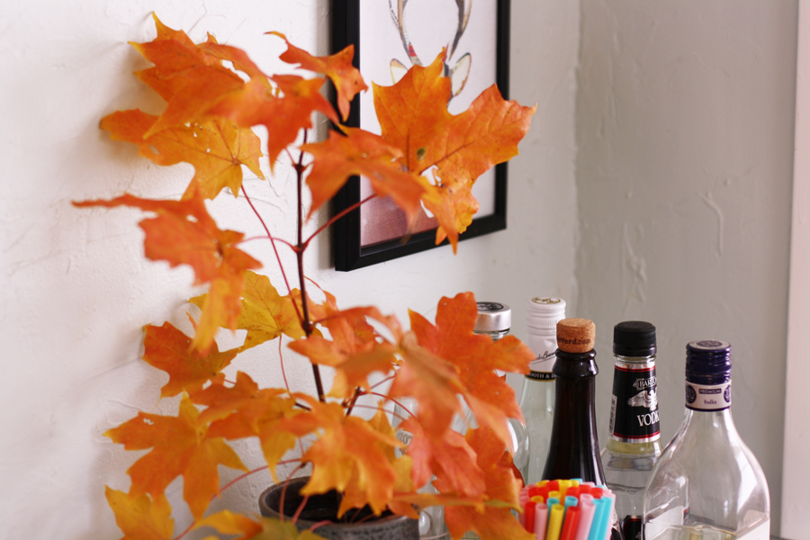 red_leaves_bar