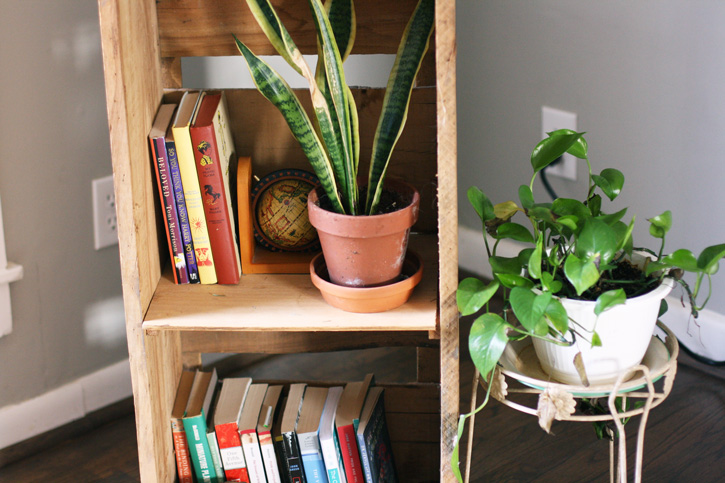 middle_shelf