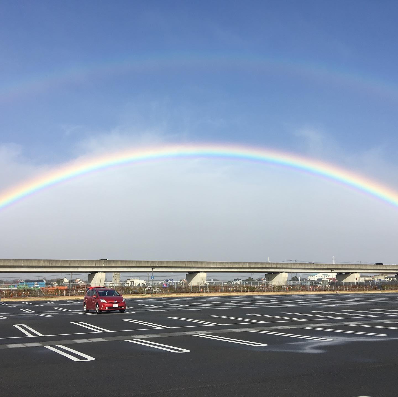 今日のSNSはみんな虹だね