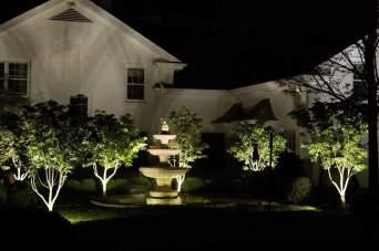 Formal fountain with illuminated dogwoods