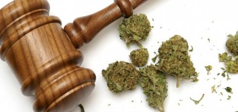 Higher latitudes: Alaska legalizes marijuana use
