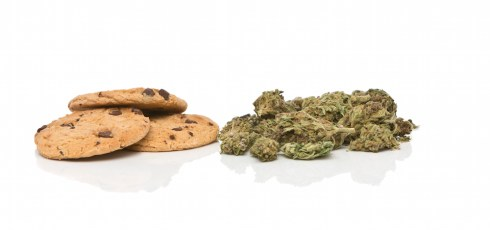 Why pot gives us the munchies