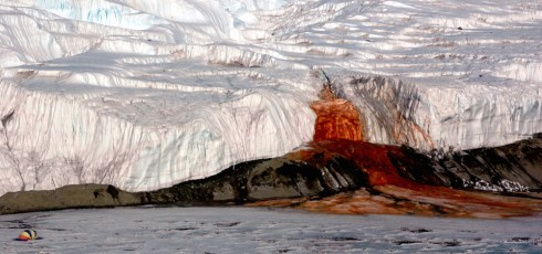 What's in Antarctica's Blood Falls?