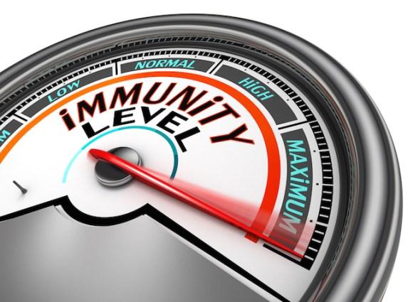 immunity conceptual meter indicate maximum, isolated on white background