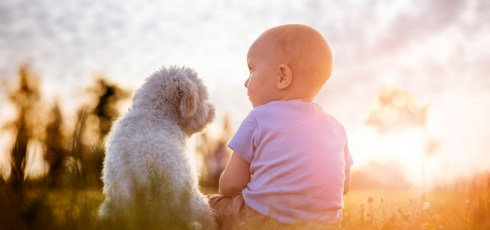 Kids like their pets more than their family, study finds