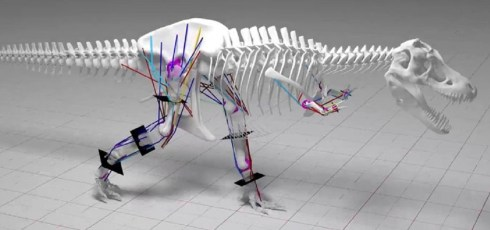 T. Rex couldn't run, new study finds