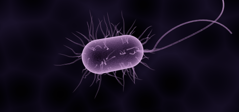Can Bacterial infections Cause Fibromyalgia?