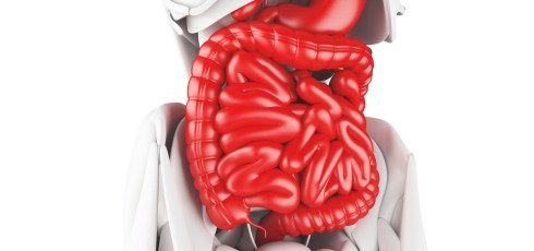 How Long Does a Colonoscopy Take? – 8 Questions about the Procedure