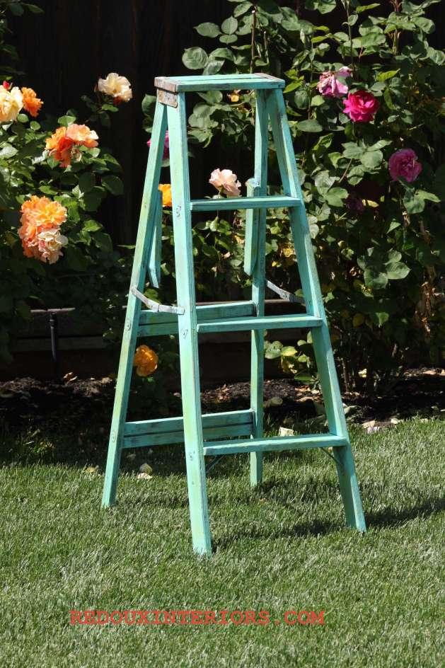Cece ladder 1