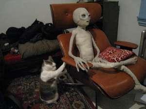 Alien in Living Room
