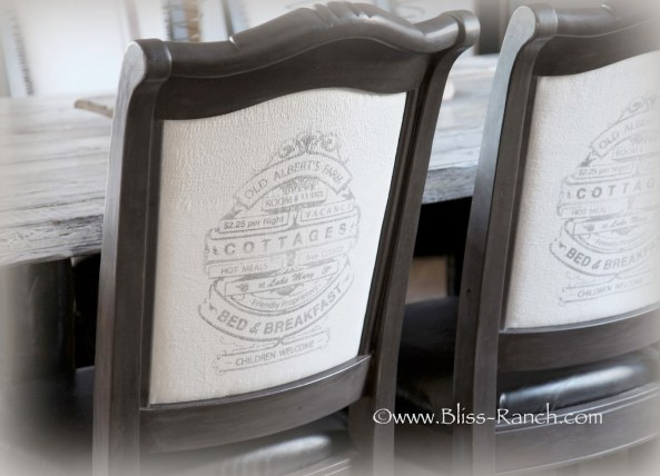 Bliss Ranch Chairs