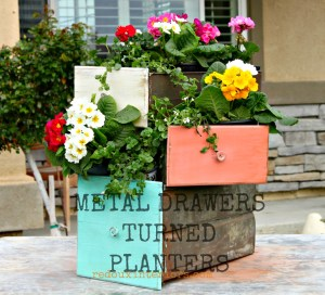 Old Drawers Turned Into Planters