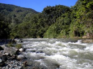 Río Yaque del Norte